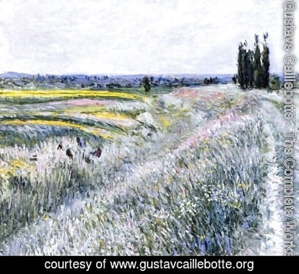 Gustave Caillebotte - The Plain at Gennevilliers, Group of Poplars