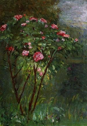 Gustave Caillebotte - Rose Bush In Flower