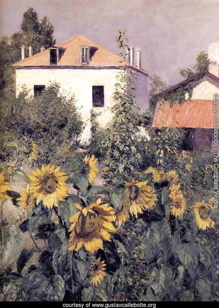 Sunflowers  Garden At Petit Gennevilliers