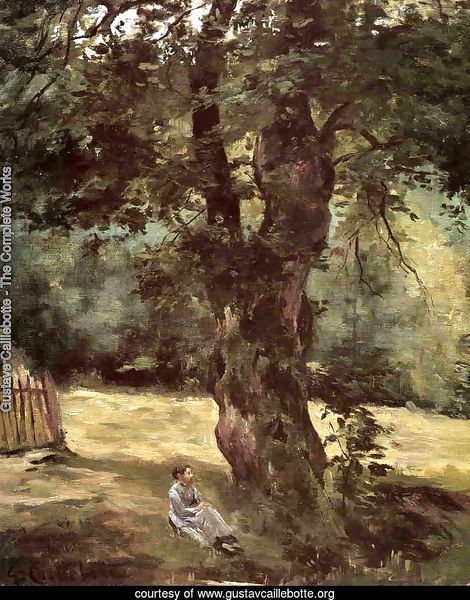 Woman Seated Under A Tree